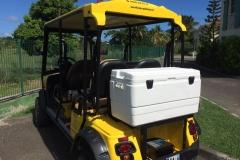Nouvelle voiture électrique pour villa boubou guadeloupe